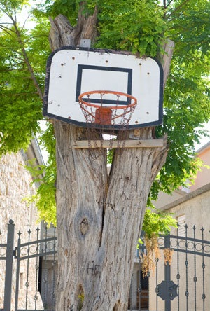 The basketball hoop in the back yard of Tang Chao